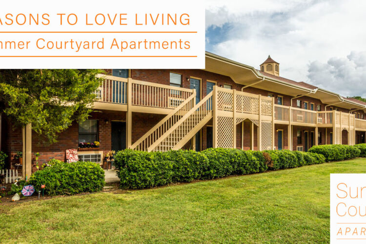 6 Reasons to Love Living at Summer Courtyard Apartments